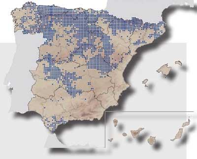 Distribución del Corzo en España