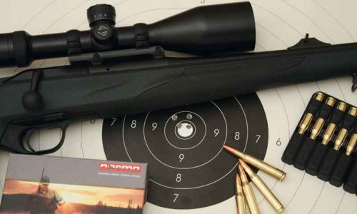 Rifle Blaser R8 Professional Success Stutzen