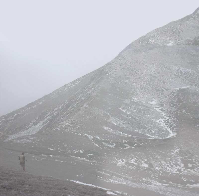 Perdices-alta-montana
