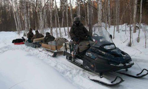 Técnicas y equipo para cazar en el Círculo Polar