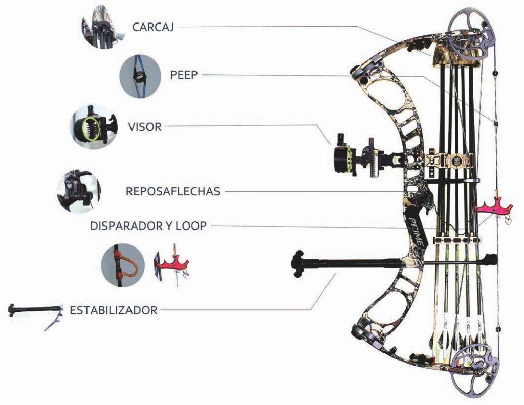 Caza con arco reportajes accesorios del-arco compuesto