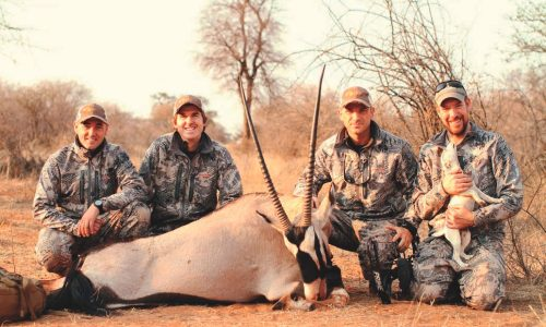 Tipos de arcos para caza. Introducción a la caza con arco (I)