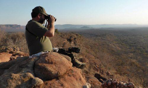 Caza del bushbuck en la Comarca del Cabo