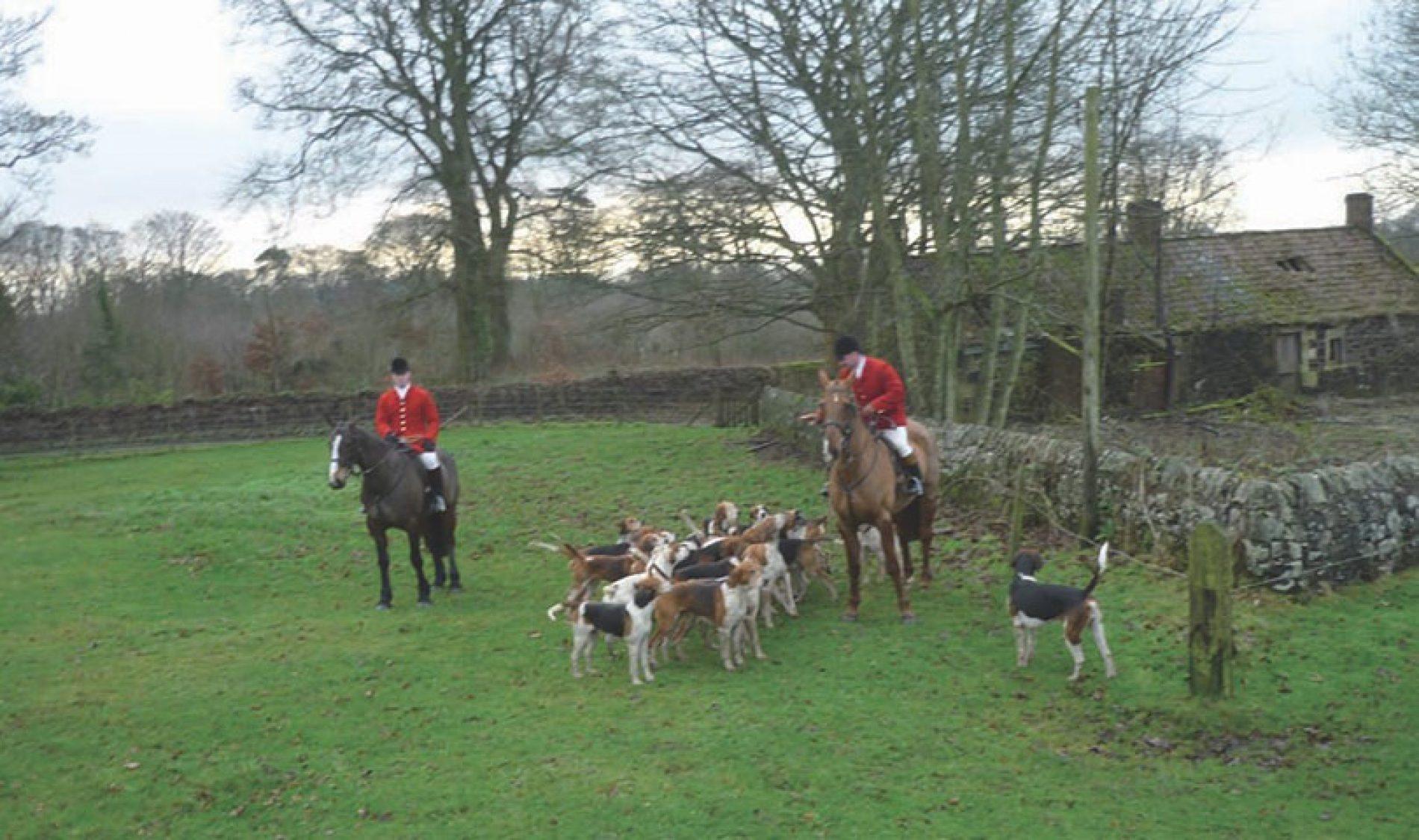 Caza de faisanes en ojeo y zorros a caballo en Escocia