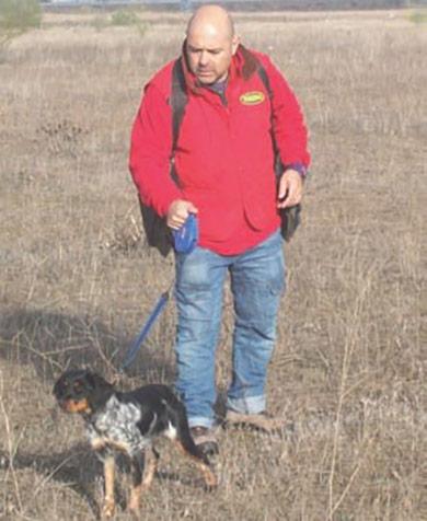 perros-de-caza-adiestramiento-pautas-basicas-de-entrenamiento-del-perro-de-caza