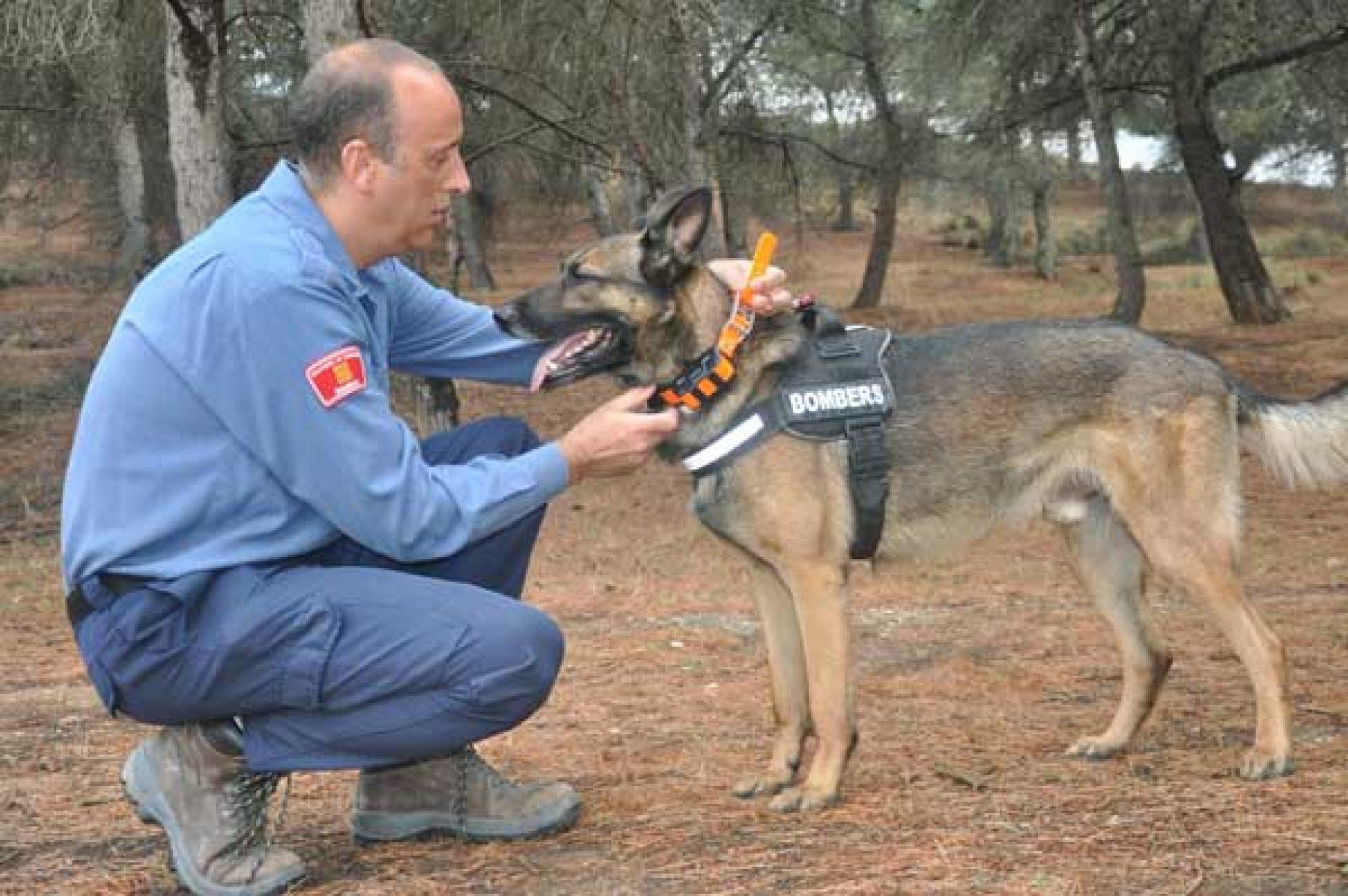 Sistema de rastreo de perros de Garmin