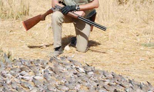 Disfrute de la caza ;en Gambia y Senegal