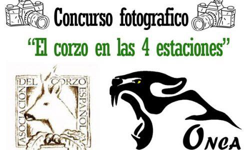Concurso Fotográfico ACE 2015, El Corzo en las Cuatro Estaciones