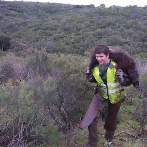 Una amenaza para las monterías en Extremadura