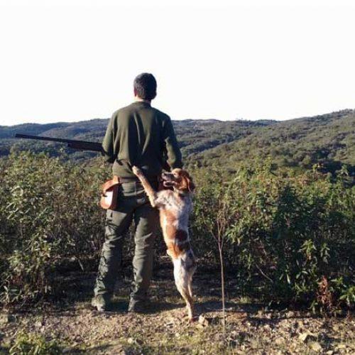 Campaña para la prevención de los accidentes de caza
