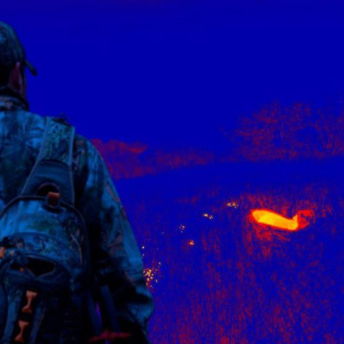 Cámara SEEK THERMAL para buscar presas heridas en la oscuridad