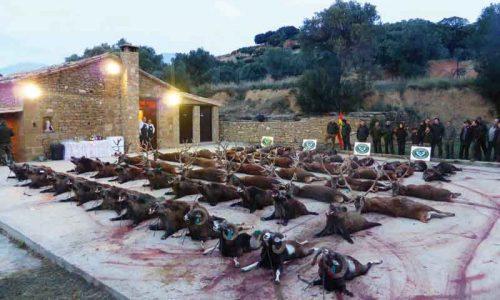 Manuel Cabezas abandera la montería en Bastarás