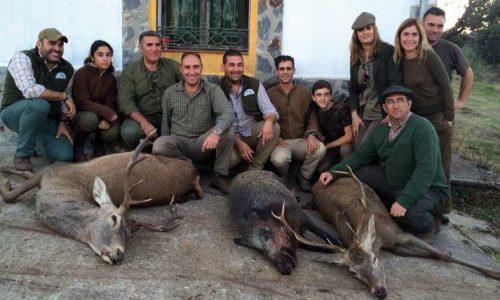 Libre de venados y Jabalíes en Torilejos