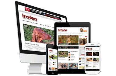 publicidad-web