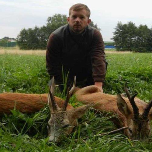 Corzos en Polonia con Ingeniería Cinegética de la Mancha