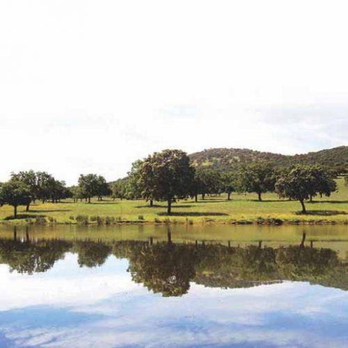 Los Claros, Paraíso cinegético en plena Sierra Morena