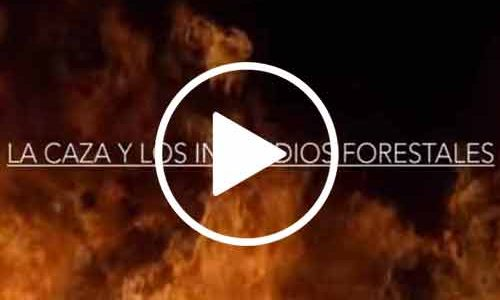 Documental, La caza y los incendios forestales