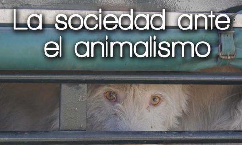 El I Foro Caza y Sociedad analizará la situación creada por los animalistas