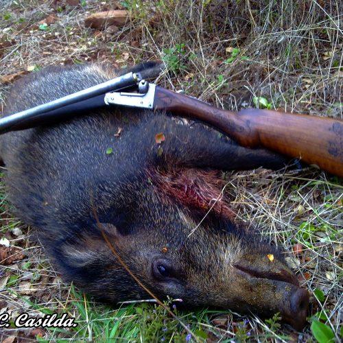 6 Consejos para montear con escopeta