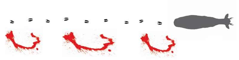 Corzos-huellas-y-sangre-2
