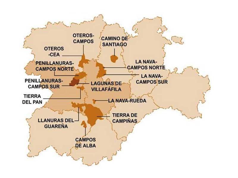 Mapa-de-abutardas-en-Castilla