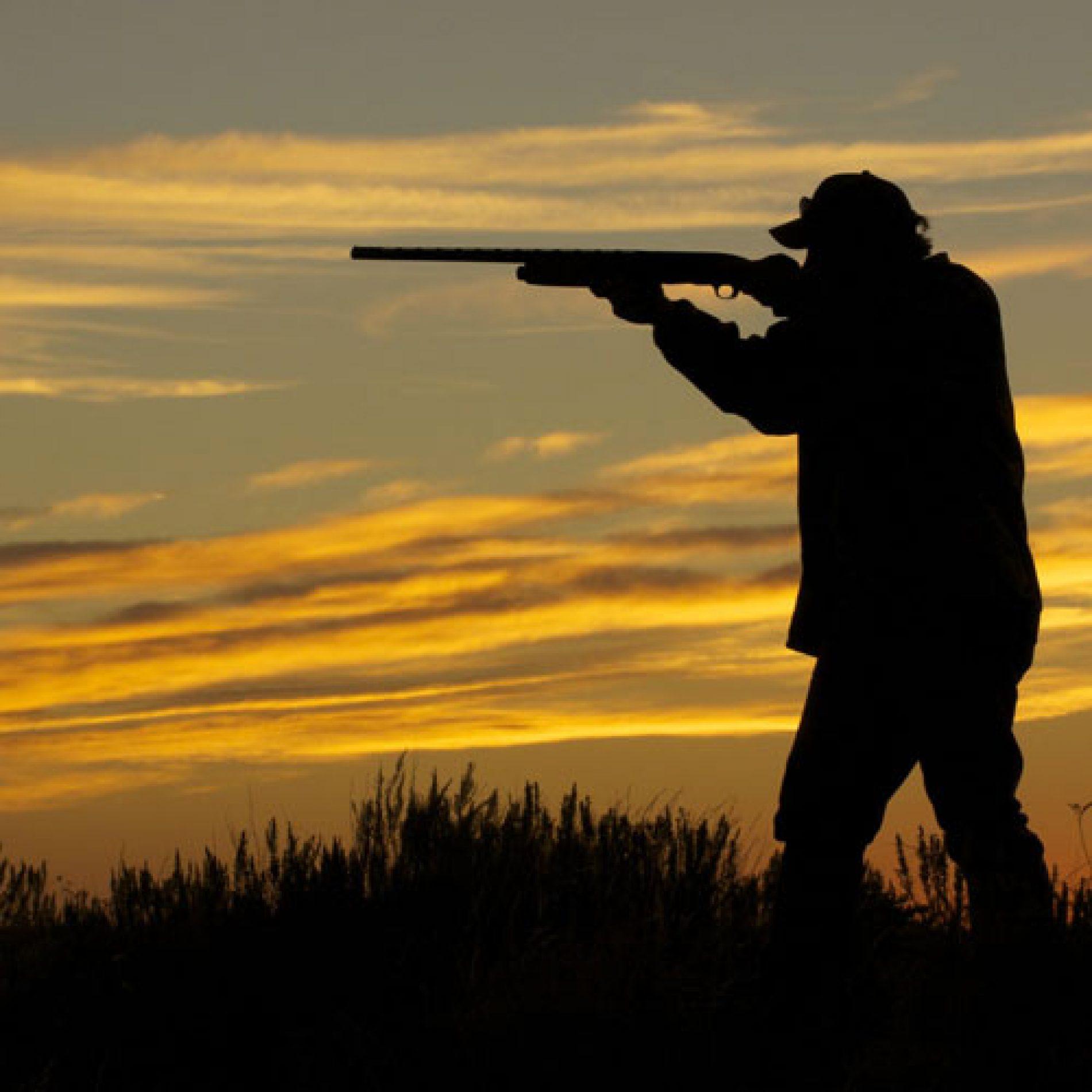 ¿Qué trámites debo seguir para instalar un campo de tiro eventual?