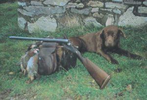 Mi perra Julia con un par de perdicillas de las sierras zamoranas.