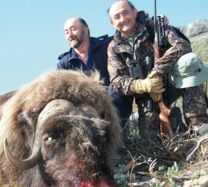 Caza-mayor-reportajes-internacional-caza-de-buey- almizclero-en-Canadá-11