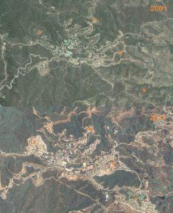 Caza-mayor-reportajes-nacional-caza-mayor-en-zonas-urbanas-image7