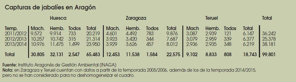 Caza-mayor-reportajes-nacional-problemas-del- Jabali-en- España-II-ARAGON