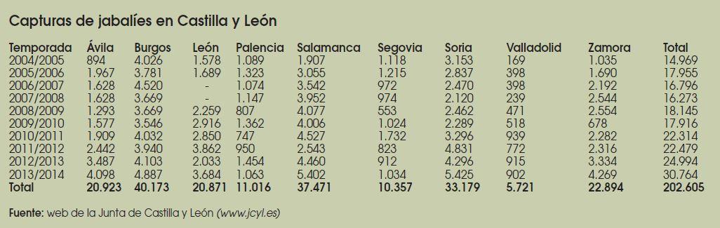 Caza-mayor-reportajes-nacional-problemas-del- Jabali-en- España-II-CASTILA-LEON
