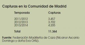 Caza-mayor-reportajes-nacional-problemas-del- Jabali-en- España-II-MADRID
