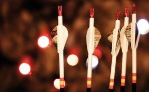 Caza con arco-reportajes-tipos-de-flechas-y-puntas-para-caza-mayor-plumas