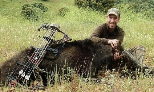 Tipos de flechas y puntas para caza mayor. Introducción a la caza con arco (II)