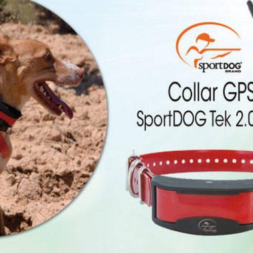 Ya tenemos ganador del sorteo del collar GPS SportDOG Tek 2.0
