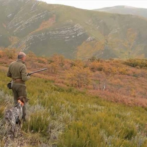 Perdiz roja, tres terrenos, tres formas distintas de cazarla