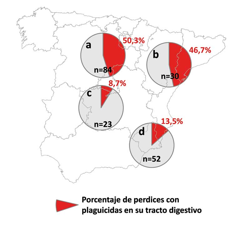 Proyecto-semillas-fig-2