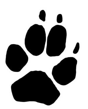 rastros-lobos-Huella-delantera