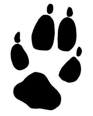 rastros-lobos-Huella-trasera