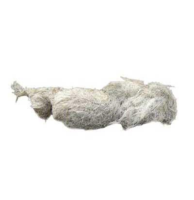 rastros-lobos-heces-ganado-ovino