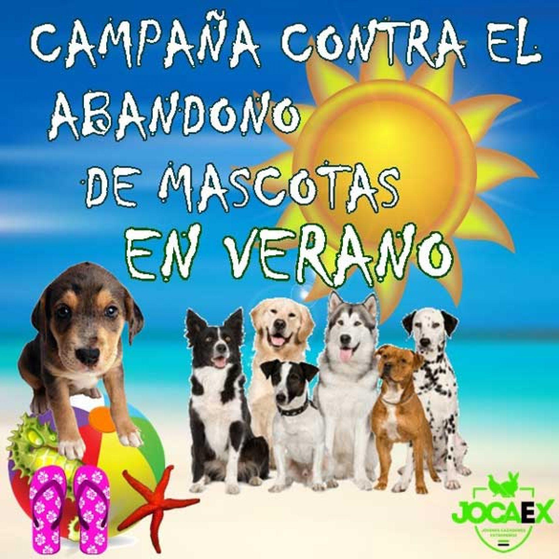 Campaña Jocaex Contra El Abandono De Mascotas En Verano