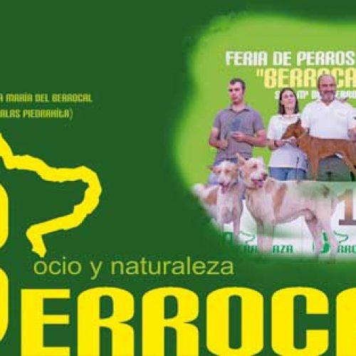BERROCAZA VIII: Feria de Perros y Caza