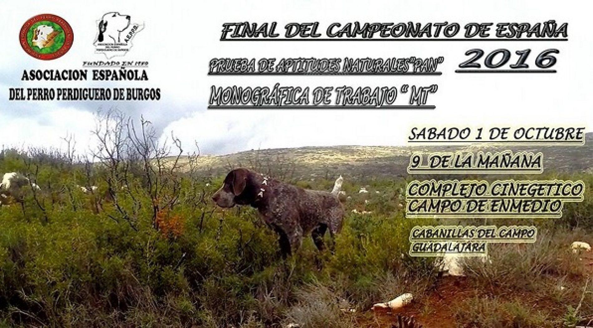 Final del Campeonato de España del Perdiguero de Burgos