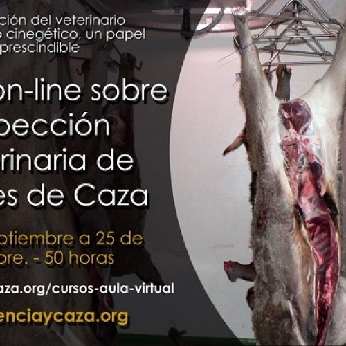 La carne de caza. Salud y seguridad