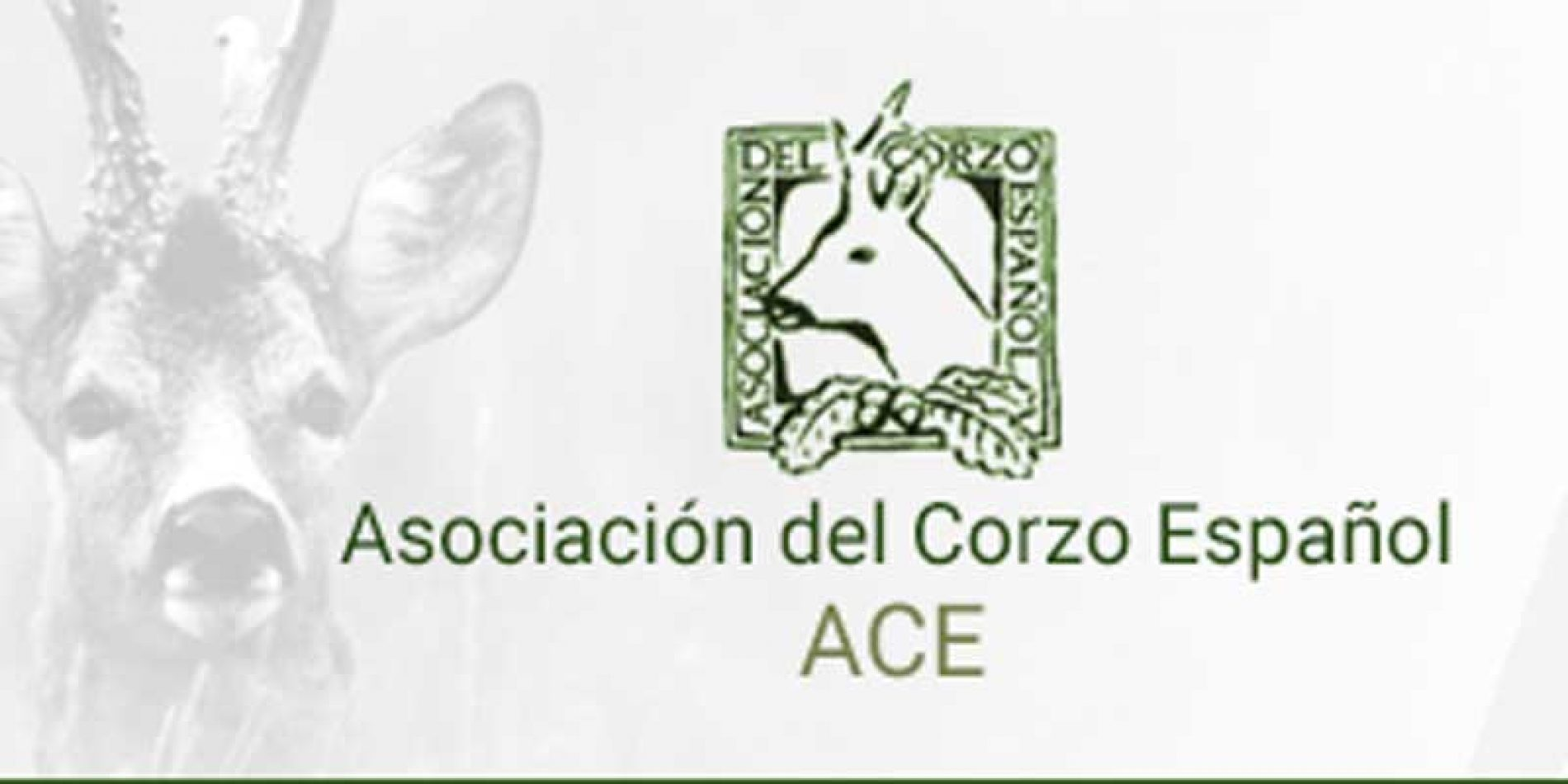 La ACE se incorpora a la red rural nacional