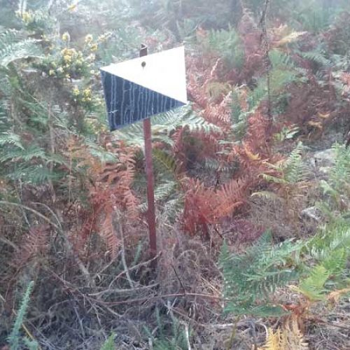 Sos Coello denuncia la falta de señalización de los terrenos libres en Galicia