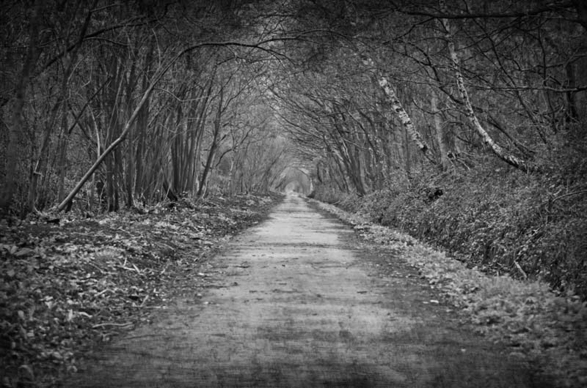 ¿Qué hago si los caminos de mi finca han pasado de privados a públicos?