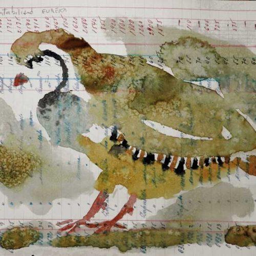 Exposición Las perdices de la viña, de Pablo Capote