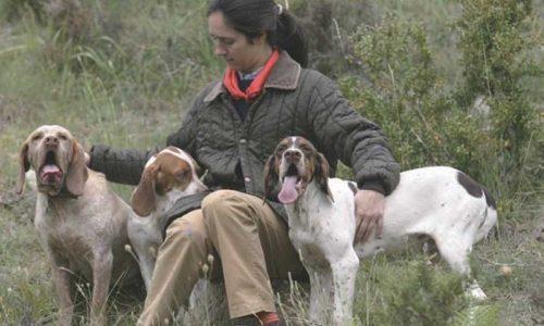 La selección del perro de caza II