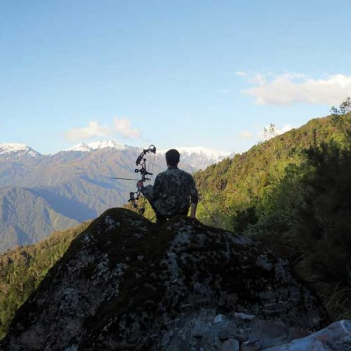 La caza con arco como herramienta de gestión ambiental